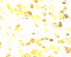 Gold Falling Petals