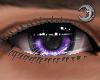 Violet King Eyes