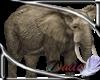 Flat Prop elephant