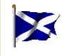 Animated Scottish Flag