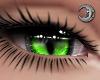 Feline Toxic Eyes F