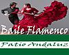 [M] PA Baile Flamenco x2