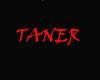 TANER&TATTO