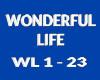 [iL] Wonderful Life