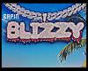 Big Blizzy's Bustom