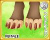 . sibyl   paws