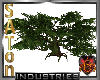 [SaT]Huge tree
