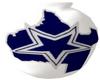 Dallas Cowboys Vase