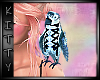 ! Parrot Pet Blue Bird