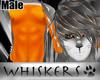 Whiskers :Tango Fur M