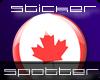 SFS Canada Button Small