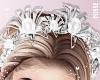 n| Erika Crown Silver