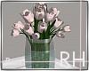 Rus: RH roses