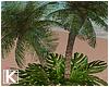 |K 🌴 Tropical Palm