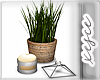! DEcor plant