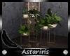 [Ast] Secret Plants Set