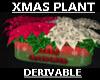 NEW  XMAS PLANT