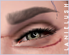 LL* Sculpted Brows   M