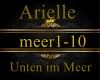 Arielle-Unten im Meere