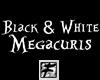 ~F~ BW Megacurls M/F