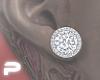 S.007 Earings [ASTERI]