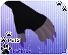 [Pets] Moia | claws