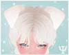 Y| Puppy Ears White