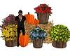 Flowershop display