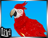 HOLBOX Parrot Fly/Flip