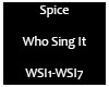 Spice - Who Sing It