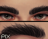 !! Eyebrows Gen