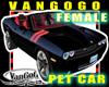 VG Black Avi CAR female