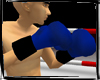 Blue Boxing Gloves ~Ani~