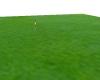 extend grass
