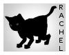 Black Cat c: