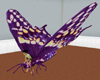 animated purple butterfl