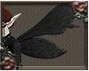 Falorian Fae. Wings v12