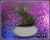 M:: Potted Plant