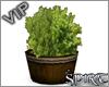 *S* Town plant tub
