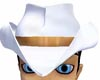 **SA71**White Cowboy Hat