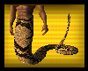 [Bee] Snake Man