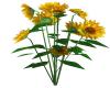 Sunflowers Decor