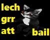 chat  domestiques