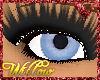 WF>sky blue eyes