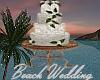 Beach Wedding Cake/Poses