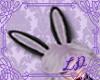 [💝LD] BunnyEars B/P