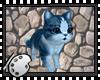 (*A) Gato Artico