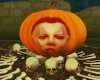 Meyers pumpkin