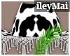 Cow Print Hat| BL