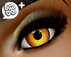 IMVU+ F Eye Gld 0